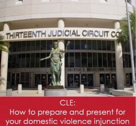CLE - How to prepare and present at your domestic violence injunction.